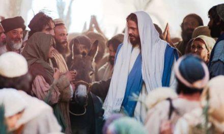 28 de marzo: Domingo de Ramos